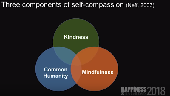 Components of Self-Compassion